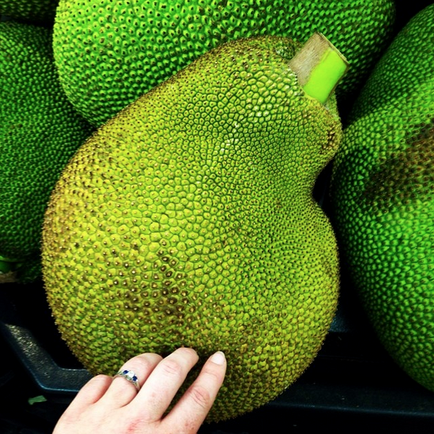 P.S. this is what a jackfruit looks like!